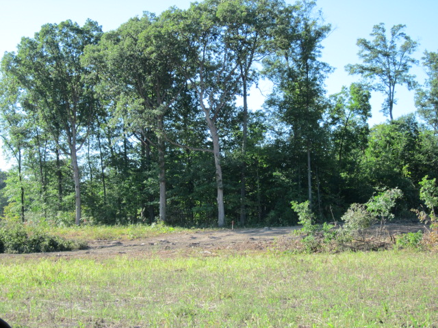 Featured image for New Home Sites Coming on the Gorgeous 15 Acre Lake in The Forest at Foxwood!