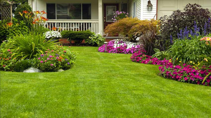 Featured image for Important Yard Maintenance and How-Tos